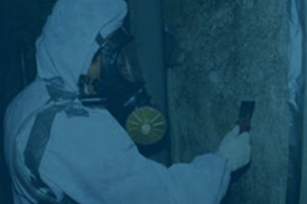 Asbestos-Abatement1-600x375
